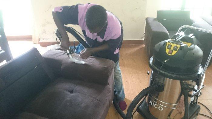Purple Sofa 2